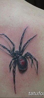 фото тату тарантул от 21.11.2017 №026 – tattoo tarantula – tatufoto.com