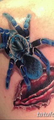 фото тату тарантул от 21.11.2017 №029 – tattoo tarantula – tatufoto.com