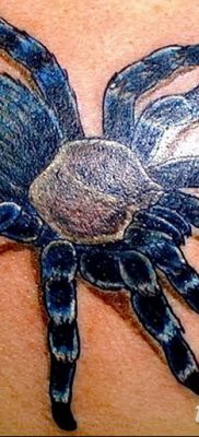 фото тату тарантул от 21.11.2017 №031 – tattoo tarantula – tatufoto.com