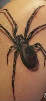 фото тату тарантул от 21.11.2017 №032 – tattoo tarantula – tatufoto.com