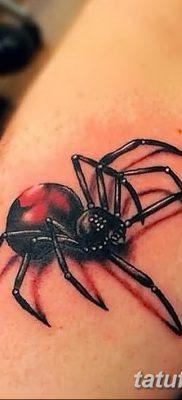 фото тату тарантул от 21.11.2017 №033 – tattoo tarantula – tatufoto.com