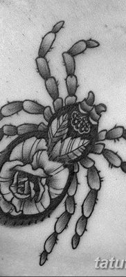 фото тату тарантул от 21.11.2017 №039 – tattoo tarantula – tatufoto.com