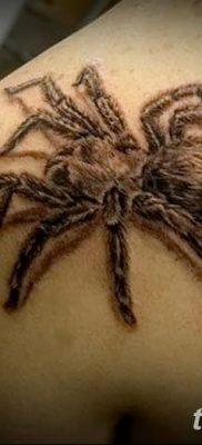 фото тату тарантул от 21.11.2017 №040 – tattoo tarantula – tatufoto.com
