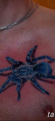 фото тату тарантул от 21.11.2017 №045 – tattoo tarantula – tatufoto.com