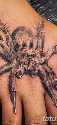 фото тату тарантул от 21.11.2017 №054 – tattoo tarantula – tatufoto.com