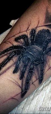 фото тату тарантул от 21.11.2017 №056 – tattoo tarantula – tatufoto.com