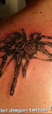 фото тату тарантул от 21.11.2017 №059 – tattoo tarantula – tatufoto.com