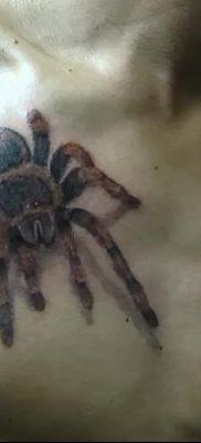 фото тату тарантул от 21.11.2017 №065 – tattoo tarantula – tatufoto.com
