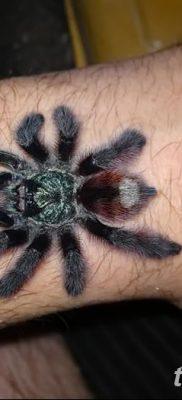 фото тату тарантул от 21.11.2017 №070 – tattoo tarantula – tatufoto.com