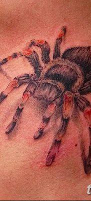 фото тату тарантул от 21.11.2017 №075 – tattoo tarantula – tatufoto.com