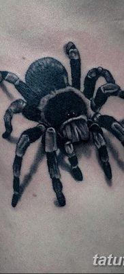 фото тату тарантул от 21.11.2017 №081 – tattoo tarantula – tatufoto.com