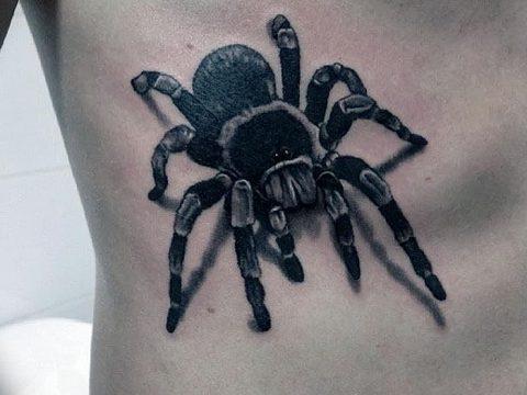 фото тату тарантул от 21.11.2017 №081 - tattoo tarantula - tatufoto.com