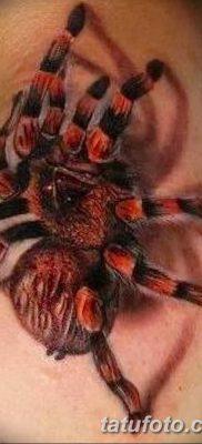 фото тату тарантул от 21.11.2017 №095 – tattoo tarantula – tatufoto.com