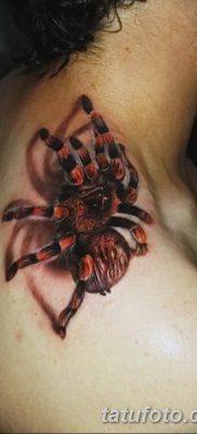 фото тату тарантул от 21.11.2017 №116 – tattoo tarantula – tatufoto.com