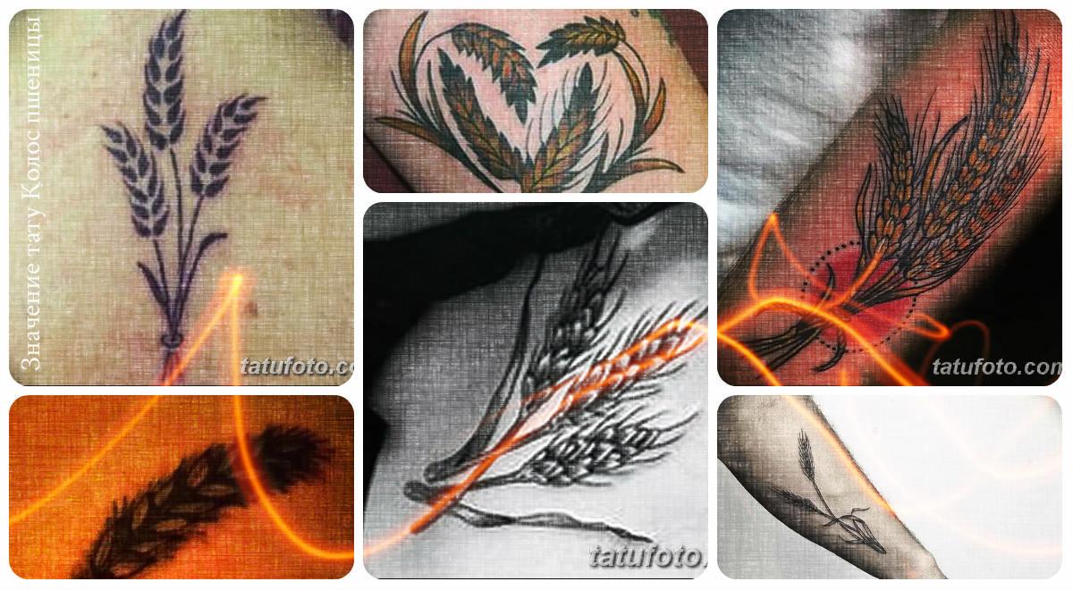 Значение тату Колос пшеницы - коллекция примеро готовых рисунков татуировки на фото