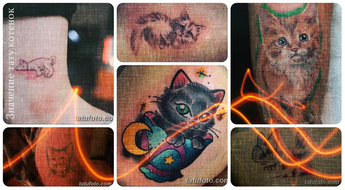 Значение тату котенок - коллекция фотографий с рисунками готовых татуировок
