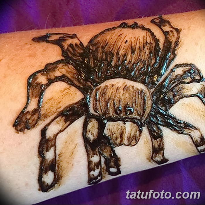 фото Мехенди паук от 03.12.2017 №015 - Mehendi the spider - tatufoto.com