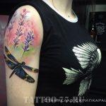 фото пример работы тату салона tattoo-77 город москва - картинка 17