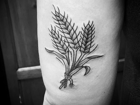 фото тату Колос пшеницы от 21.12.2017 №060 - Wheat spike tattoo - tatufoto.com