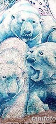 фото тату белый медведь от 03.12.2017 №011 – white bear tattoo – tatufoto.com