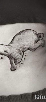 фото тату белый медведь от 03.12.2017 №016 – white bear tattoo – tatufoto.com