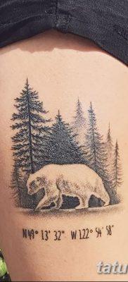 фото тату белый медведь от 03.12.2017 №045 – white bear tattoo – tatufoto.com
