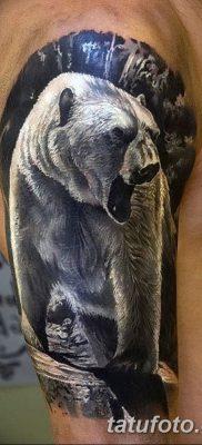 фото тату белый медведь от 03.12.2017 №073 – white bear tattoo – tatufoto.com