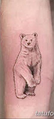 фото тату белый медведь от 03.12.2017 №074 – white bear tattoo – tatufoto.com