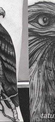 фото тату беркут от 10.12.2017 №003 – golden eagle tattoos – tatufoto.com