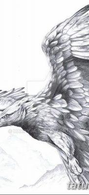 фото тату беркут от 10.12.2017 №010 – golden eagle tattoos – tatufoto.com