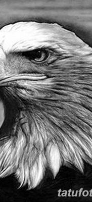 фото тату беркут от 10.12.2017 №013 – golden eagle tattoos – tatufoto.com