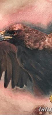 фото тату беркут от 10.12.2017 №016 – golden eagle tattoos – tatufoto.com