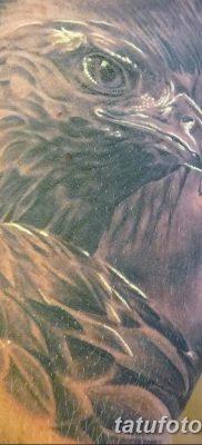 фото тату беркут от 10.12.2017 №023 – golden eagle tattoos – tatufoto.com