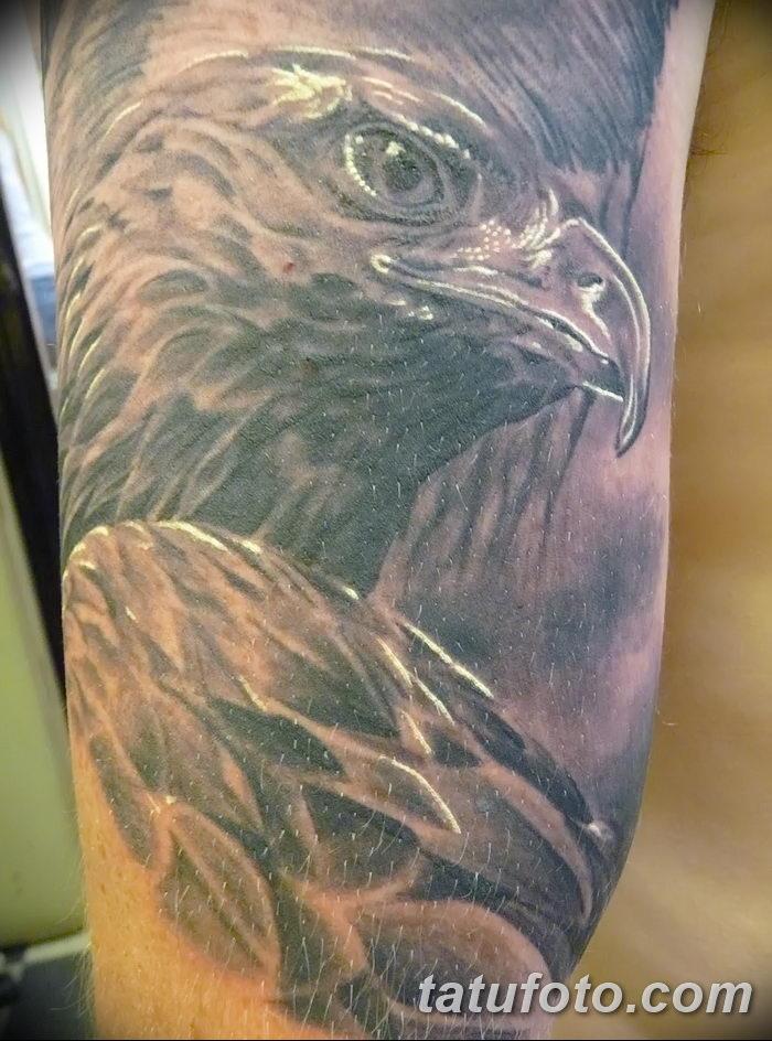 фото тату беркут от 10.12.2017 №023 - golden eagle tattoos - tatufoto.com
