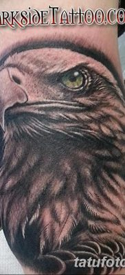 фото тату беркут от 10.12.2017 №027 – golden eagle tattoos – tatufoto.com