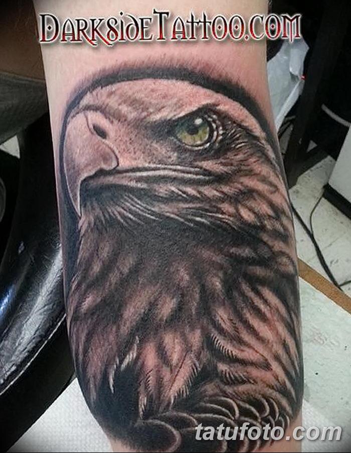 фото тату беркут от 10.12.2017 №027 - golden eagle tattoos - tatufoto.com
