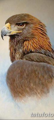 фото тату беркут от 10.12.2017 №029 – golden eagle tattoos – tatufoto.com