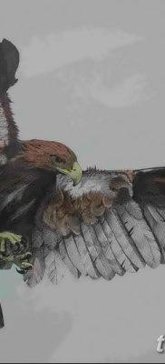 фото тату беркут от 10.12.2017 №030 – golden eagle tattoos – tatufoto.com