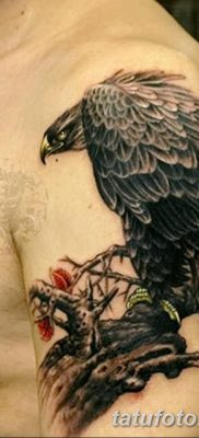фото тату беркут от 10.12.2017 №042 – golden eagle tattoos – tatufoto.com