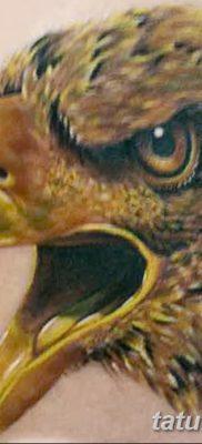 фото тату беркут от 10.12.2017 №044 – golden eagle tattoos – tatufoto.com