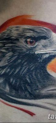 фото тату беркут от 10.12.2017 №048 – golden eagle tattoos – tatufoto.com