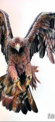 фото тату беркут от 10.12.2017 №054 – golden eagle tattoos – tatufoto.com