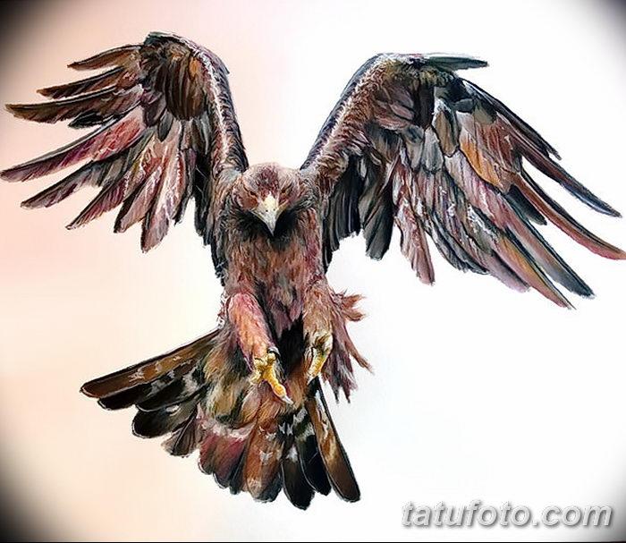 фото тату беркут от 10.12.2017 №054 - golden eagle tattoos - tatufoto.com
