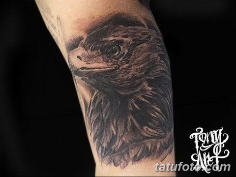 фото тату беркут от 10.12.2017 №055 - golden eagle tattoos - tatufoto.com