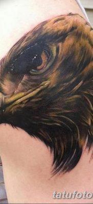 фото тату беркут от 10.12.2017 №057 – golden eagle tattoos – tatufoto.com