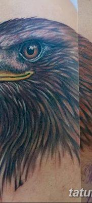 фото тату беркут от 10.12.2017 №066 – golden eagle tattoos – tatufoto.com