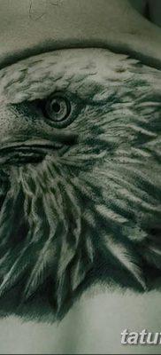 фото тату беркут от 10.12.2017 №076 – golden eagle tattoos – tatufoto.com
