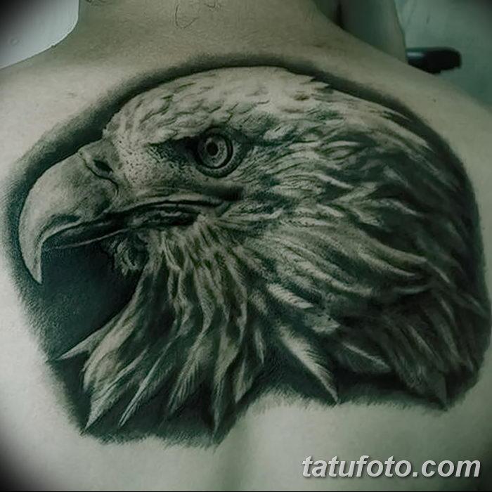 фото тату беркут от 10.12.2017 №076 - golden eagle tattoos - tatufoto.com
