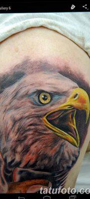 фото тату беркут от 10.12.2017 №080 – golden eagle tattoos – tatufoto.com