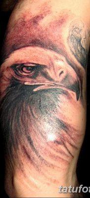 фото тату беркут от 10.12.2017 №081 – golden eagle tattoos – tatufoto.com